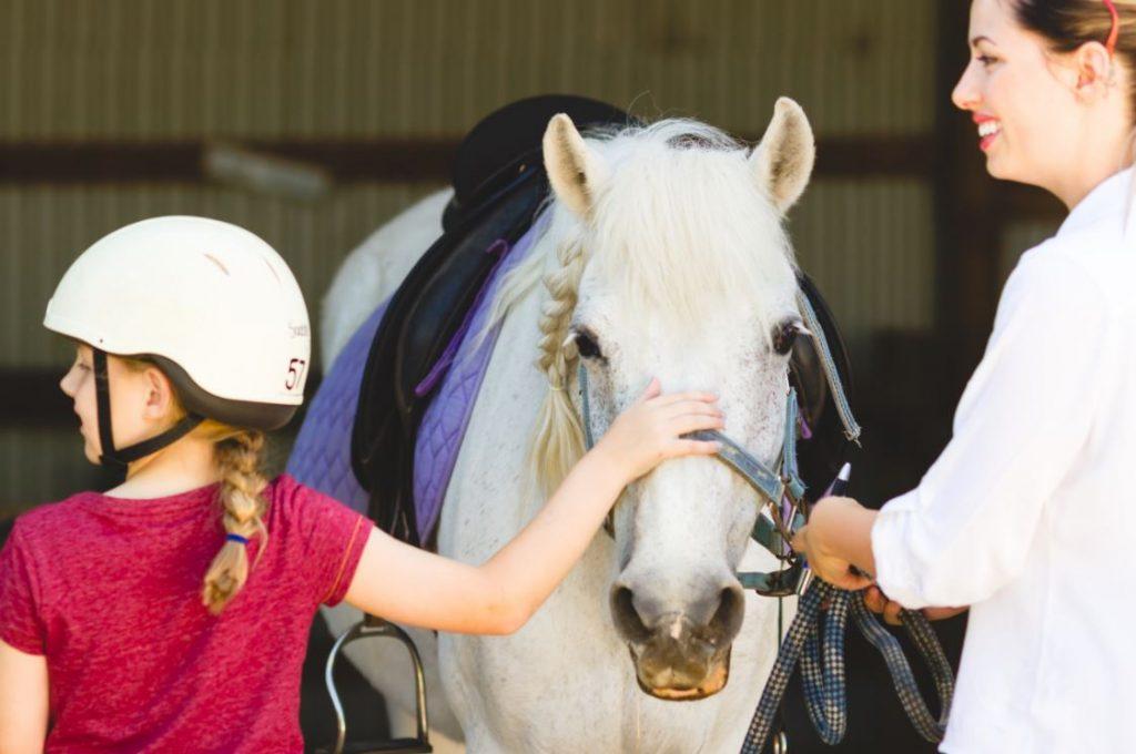 En la equitación para niños se acarician caballos