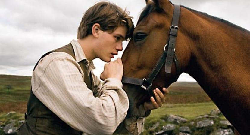 como se relacionan los caballos
