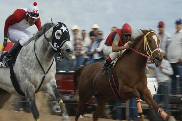 Caballos de carreras famosos