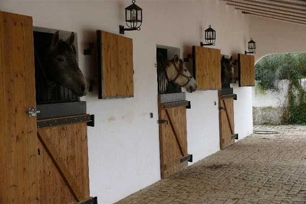 Caballerizas de caballos