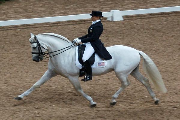 Que es la doma clásica de caballos